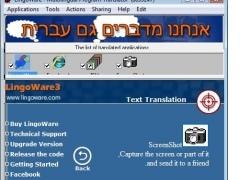 LingoWare-chs 5.16 Screenshot
