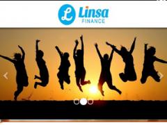 Linsa Finance 1.0 Screenshot