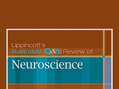 lippincott illustrated reviews neuroscience