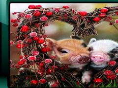 Little Pig Wallpaper 2.6 Screenshot