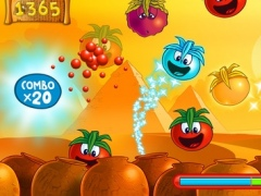 Little Tomato: Age of Tomatoes 1.04 Screenshot