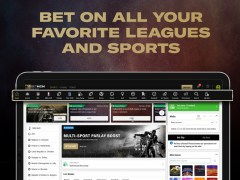 Live Animals - Sliding Square Puzzle 2.0 Screenshot