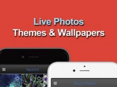 Live Wallpaper 1.0.1 Screenshot