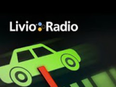 Livio Car Internet Radio Lite 1.42 Screenshot