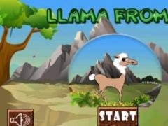 Llama from Oz 1.0 Screenshot