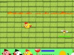 Loco Pollito 1.0 Screenshot