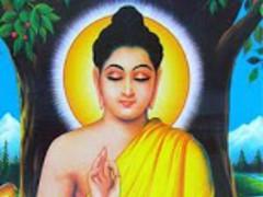 Lord Buddha Wallpapers 3.0 Screenshot