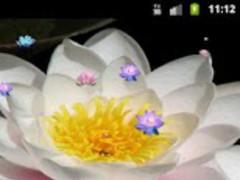 Lotus Flower Live Wallpaper 1.0 Screenshot