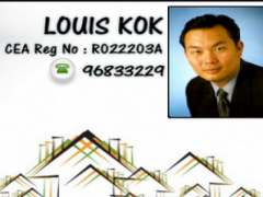 Louis Kok 4.0.1 Screenshot