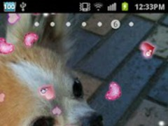 Lovely Heart LiveWallpapr 1.2 Screenshot