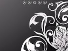 Luxury Silver Nova Go Launcher 1.1 Screenshot