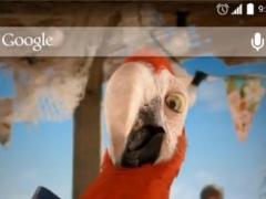 Macaw Parrot Live Wallpaper 2.0 Screenshot