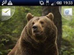 Magic Effect :Brown Bear FREE 1.2 Screenshot