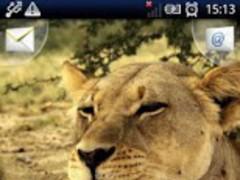 Magic Effect Lion Love 1.3 Screenshot