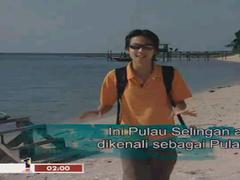 Malaysia TV 29 malay channel 1.2 Screenshot
