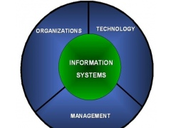 Management Information Systems 1.0 Screenshot