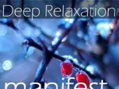 Manifest Heal Relaxation 1.0 Screenshot