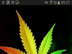 Marijuana Rastafari Animated 1.7 Screenshot
