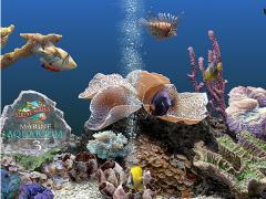 Marine Aquarium 3 3.0 Screenshot
