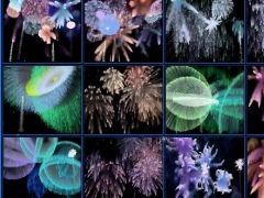 MBSS Fireworks 2.2 Screenshot