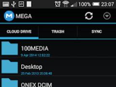 MEGA Storage Manager 2 3 0 Free Download