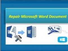 Repair Microsoft Word Document 2.0.0.26 Screenshot