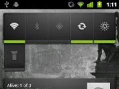 Miner's Widget 1.1 Screenshot
