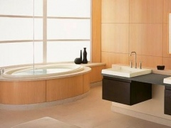 Minimalist Bathroom Design 2.0 Screenshot