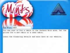 Mints Keyword Density Writer 1.1 Screenshot
