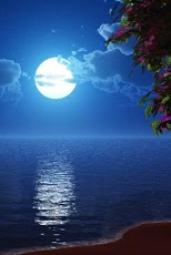 moon night theme 1 0 free download