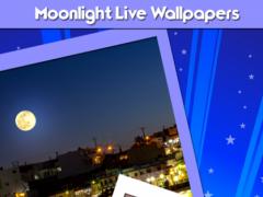 Moonlight Live Wallpapers 1.0 Screenshot