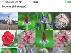 MosaicImage 1.2 Screenshot