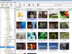 MovieShop Browser 1.7.4 Screenshot