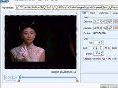 Moyea DVD to Flash Converter 6.0.1.1104 Screenshot