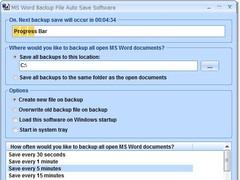 MS Word Backup File Auto Save Software 7.0 Screenshot