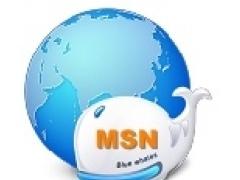 MSN Spy Monitor 4.1 Screenshot