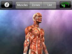 Muscle Trigger Point Anatomy 2.4.1 Free Download