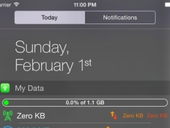 My Data Widget 1.4 Screenshot
