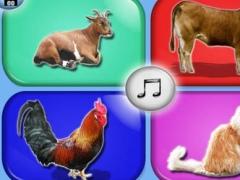 My First Farm Animals Free 1.0 Screenshot