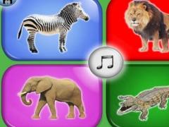 My First Jungle Animals 1.0 Screenshot