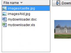 MyDownloader 1.8 Screenshot