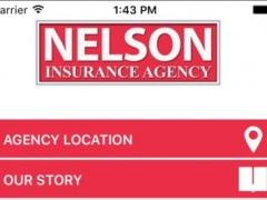 Nelson Insurance 1.0 Screenshot