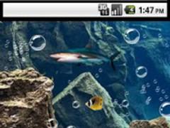 Nemo 3d Live Wallpaper 201 Free Download