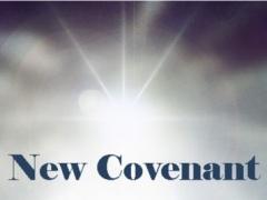 New Covenant, Thomasville, GA 2.3.2 Screenshot