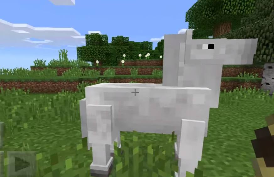 NEW Horse Mod For MCPE  1 1 Free Download