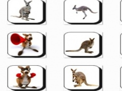 New Kangaroo Onet Connect Game 1.0 Screenshot