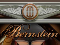 Next Launcher Theme Bernstein 4.63 Screenshot