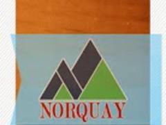 Norquay Ski Resort 1.0.0.3 Screenshot