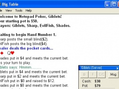 Notepad Poker 1.1 Screenshot