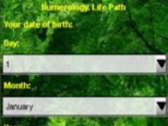 Numerology. Life Path 1.0 Screenshot